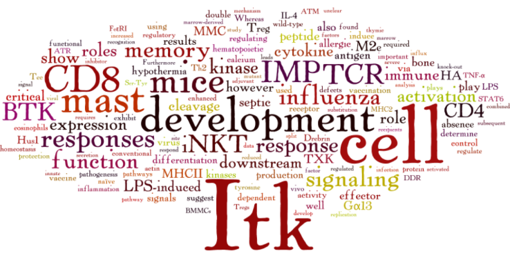 WordCloud_Publications